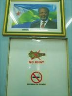 Президент Джибути говорит: No Khat!!! и советует не курить-город Джибути