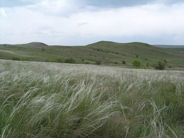 Луганская степь.