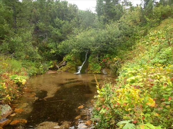 Водопадик у тропы.