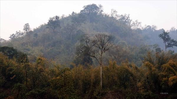 Река Каменг (стоянка)