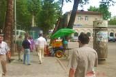 На улице города Душанбе.