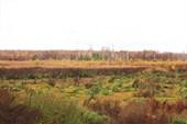 Мещерские болота