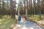 Вход на лесные танцы.