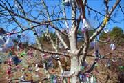 Сосочное дерево