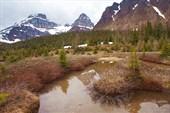 Долина Larch Valley