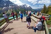 Peyto Lake viewpoint