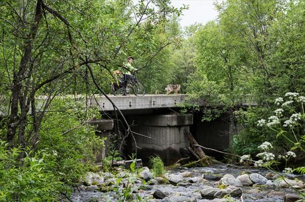 Бетонный мост бывшей железной дороги