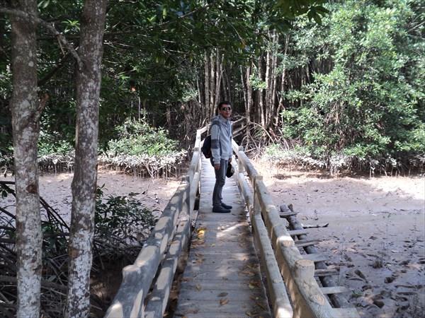 Наш гид в мангровых лесах.