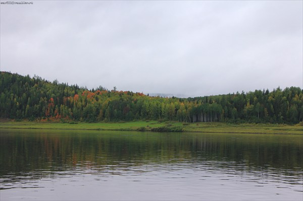 Пейзажи уже более равнинные.. Березовые рощи..