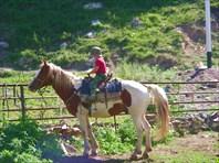 Петя на коне