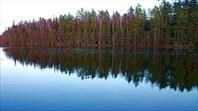 Озеро Кясму