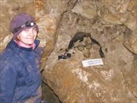 В Никитских каменоломнях