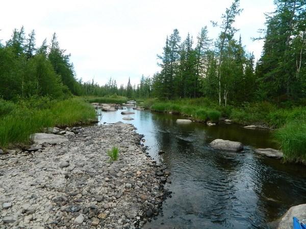 Ручей, текущий в озеро Сортлор.