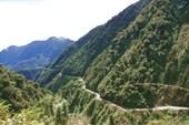 дорога идет через горы,среди джунглей.