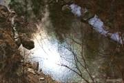 Бурятия. Аршан. Ущелье реки Кынгарга