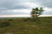 Терский берег Белого моря