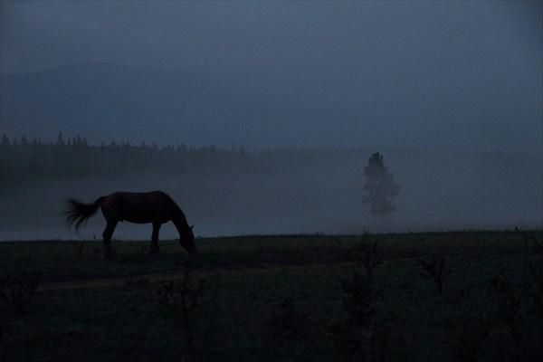 Ночной туман в Тюнгуре