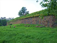 09 стена бастиона