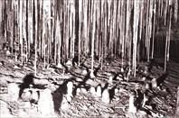 Карлюкские пещеры. Средняя Азия 1989. (С) Мукосей Виктор