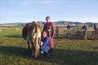 Утренняя дойка скота