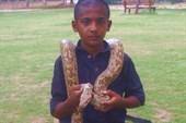 `Укротитель` змей