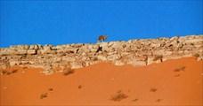 Углубляемся в Сахару