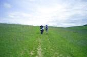 пора и по пересеченной местности погулять