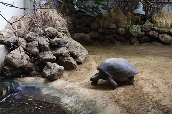 Зоопарк32