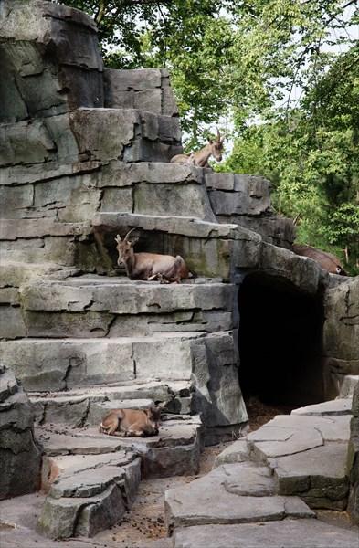 Зоопарк79