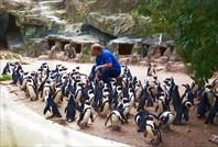 Зоопарк25