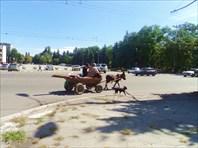 DSC00357-город Черкесск