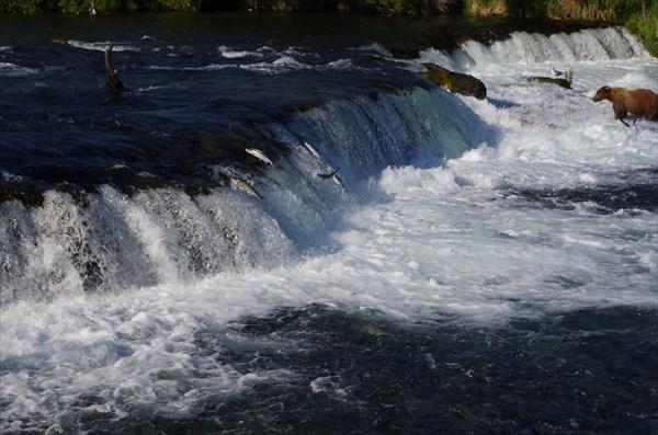 Рай для рыбака :)