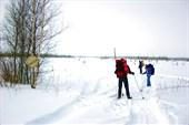 На окраине Рдейского болота