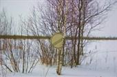 `Конец всех ограничений` на краю Рдейского болота