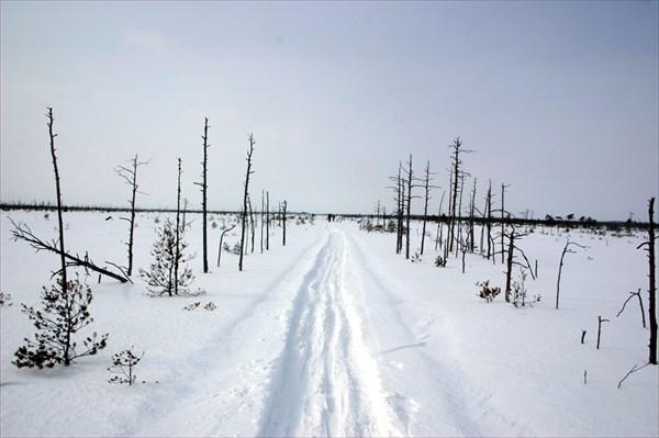 Путь через Рдейское болото
