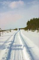 Лыжня через Рдейское болото