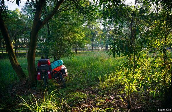 на фото: Раннее утро в пригороде Сайгона