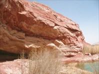 Весенняя пустыня близ Кума