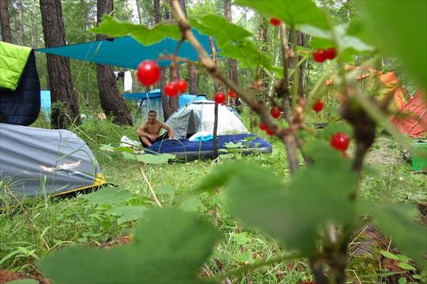 Фестивальный палаточный лагерь.