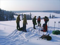 тайга Алтайского края