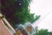 Петергоф. Нижний парк. `Римский фонтан`