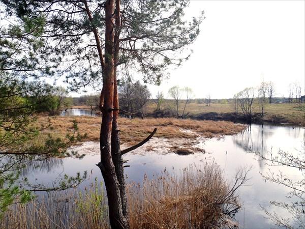 Устье реки Стометь.