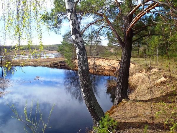 Пейзажи Смоленщины. Река Стометь.