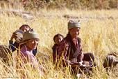 20.11.2009 г. Тибетские женщины и дети обедают в поле.Lower Tsum