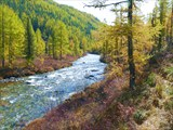 Река Большая Негота
