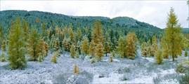 Вынужденная днёвка в долине р. Озёрная