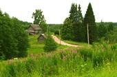 Деревня Вороново