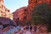 Внутри каньона