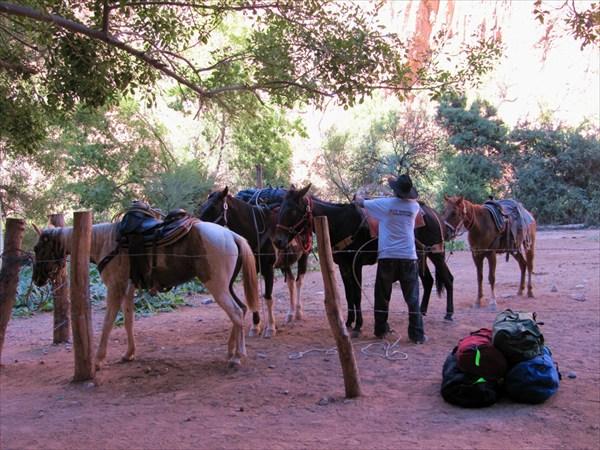 Привезли наши вещи на дно каньона