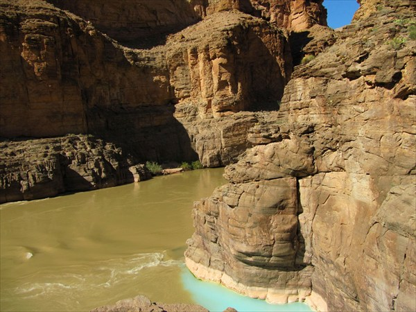 Река Хавасу (светлая) втекает в воды реки Колорадо